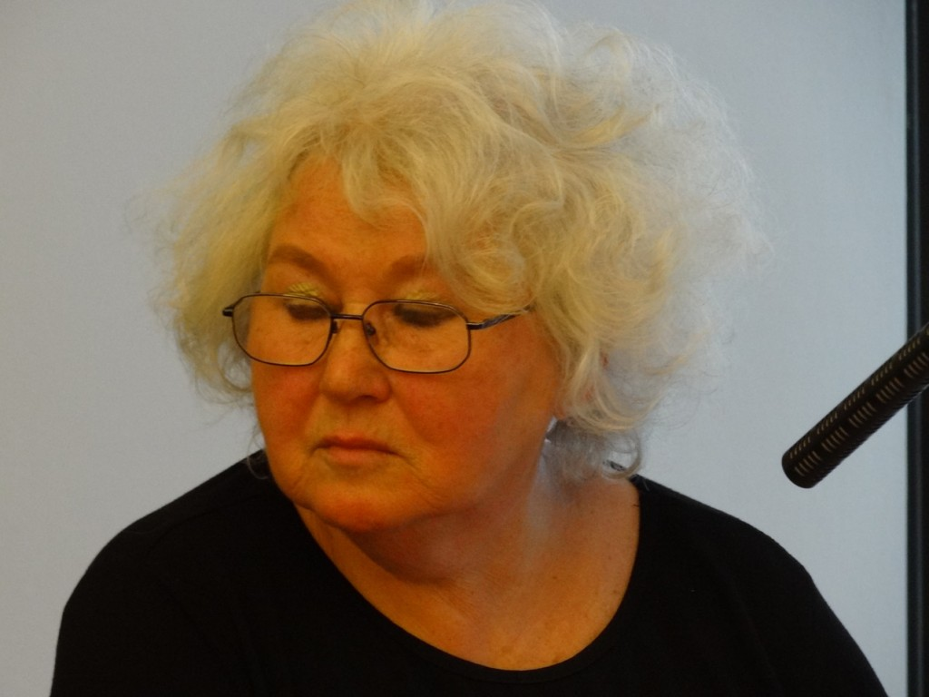 Britta Arold auf Bezirksparteitag 27.4.2013_3